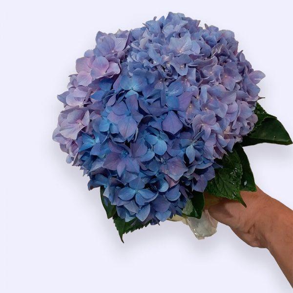 超过3枝绣球花的婚礼手捧花