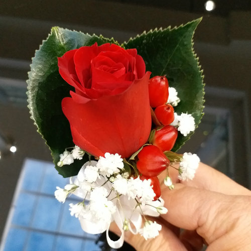 1 Red Rose with Berry Botton-hole