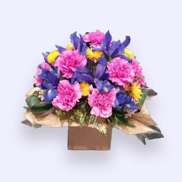 11枝鲜花(紫色单头康乃馨及莺尾)