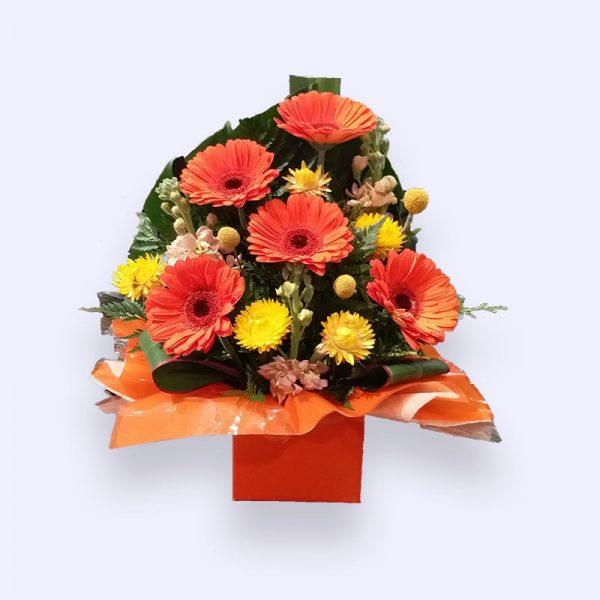 11枝鲜花(红色太阳花加配花)