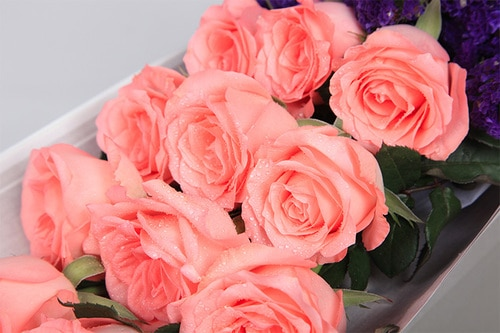 11 Stems Pink Rose with Dark Pink Minor Flower & Leaves