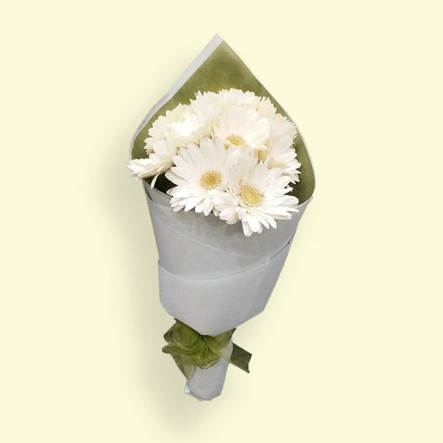 11 Stems White Gerbra
