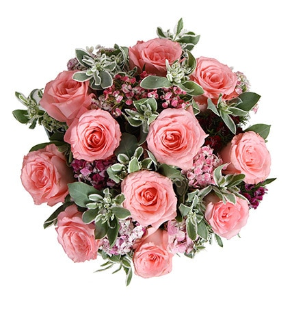 12 Stems Pink Rose & 7 Stems Dianthus with Heiwingia