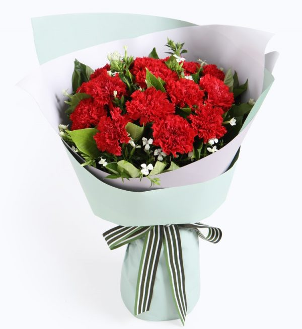 12 Stems Red Carnation & 2 Stems White Acacia with Leaves