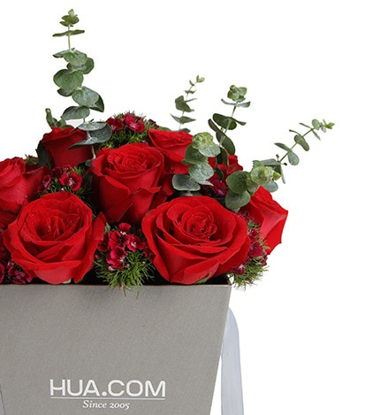 12 Stems Red Rose & 7 Stems Dianthus with Leaves