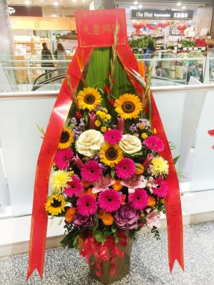 150cm (Large) Height Openning