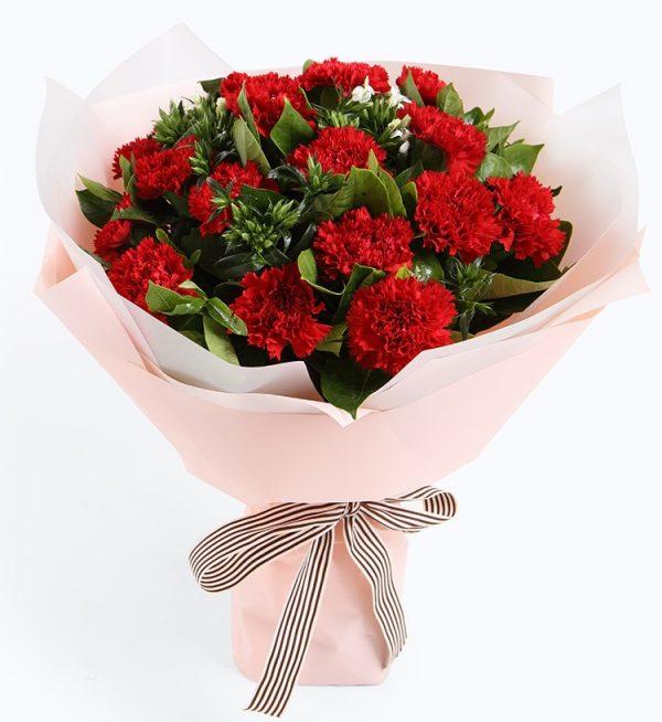 16枝红色康乃馨5枝白色相思梅配叶子/幸福典藏