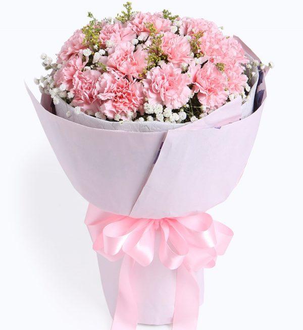 19枝粉色康乃馨配满天星黄莺等/感恩密码
