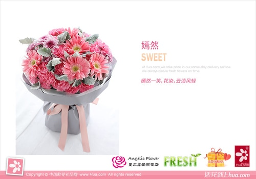 19 Stems Carnation & 5 Stems Pink Gerbra & 3 Pink Chrysanthemum with Leaves