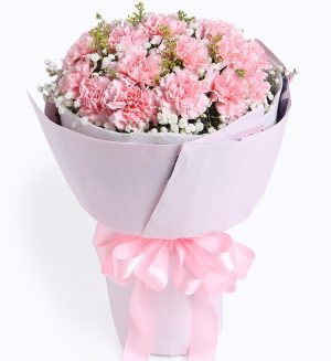 19 Stems Pink Carnation with Babysbreath & Oriole