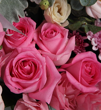 19 Stems Pink Rose & 6 Stems Pink Lisianthus & 2 Stems Chrysanthemum with Leaves