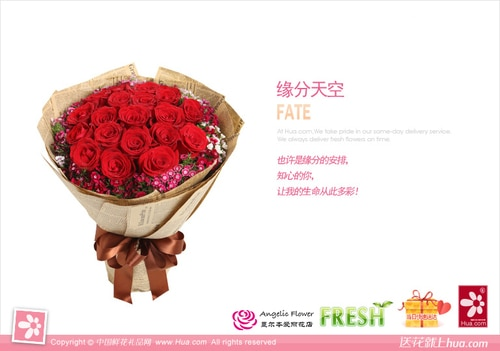 19 Stems Red Rose with Pink Minor Flower