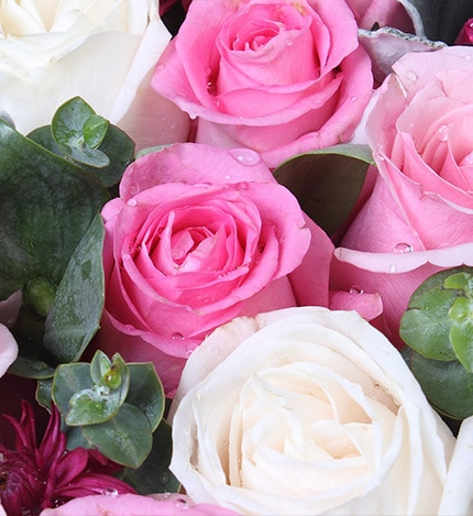 24 Stems Pink Rose & 5 Stems White Rose with Leaves