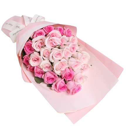 29 Stems Pink Rose
