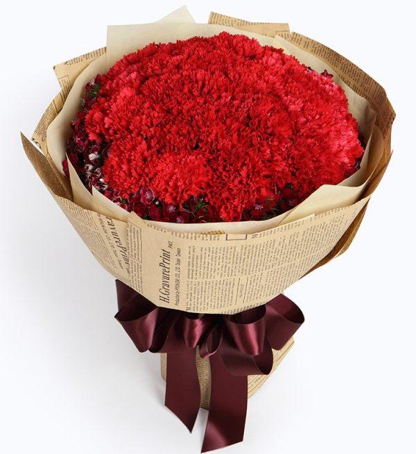 33枝红色康乃馨配粉色石竹/牵挂