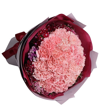 33 Stems Pink Carnation with Dark Pink Dianthus