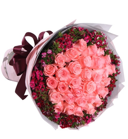33 Stems Pink Rose with Pink Dianthus