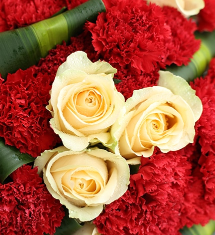 33 Stems Red Carnation & 9 Champagne Rose with Brazil Leaf