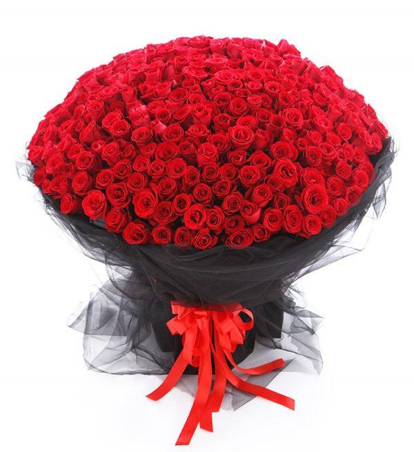 365枝红玫瑰/想你365天