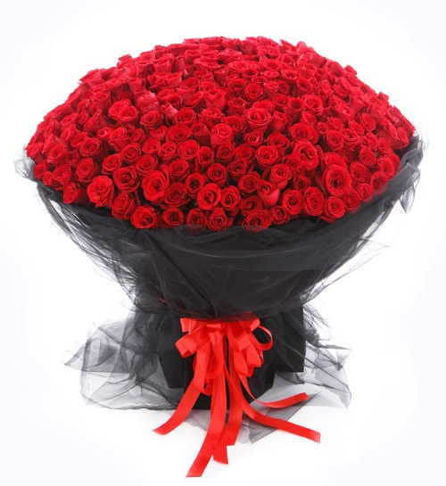 365 Stems Red Rose