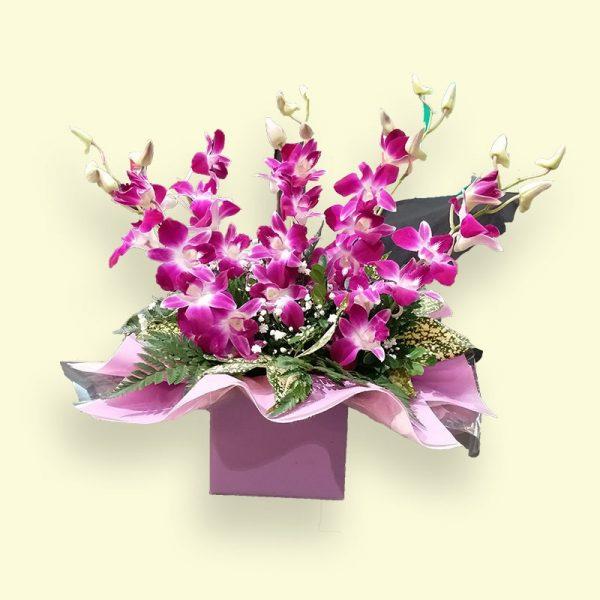 5枝紫色新加坡兰花