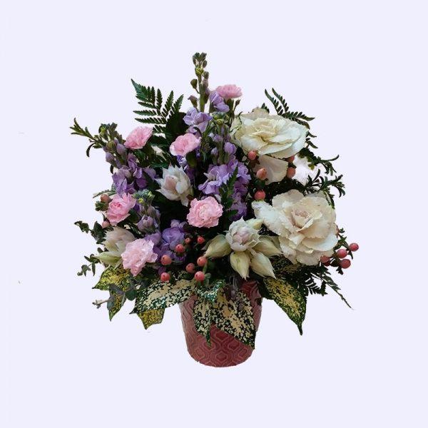 5枝紫色紫罗兰配2枝白色甘蓝及配花