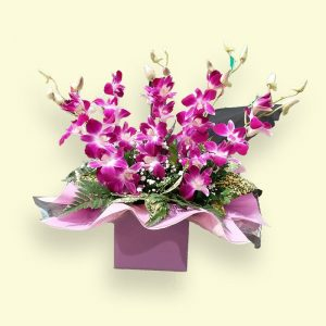 5 Stems Singapo Orchid / Fleelings