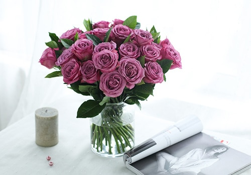 50 Stems Purple Rose