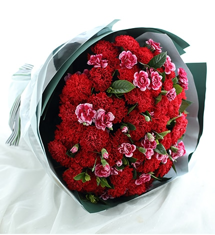 66 Stems Red Carnation & 15 Stems White-purple Spray Carnation with Leaves
