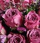 9 Stems Purple Rose with Light Purple Statice & Limonium