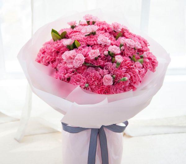 99枝粉色康乃馨10枝粉色多头康乃馨配叶子/暖暖满怀