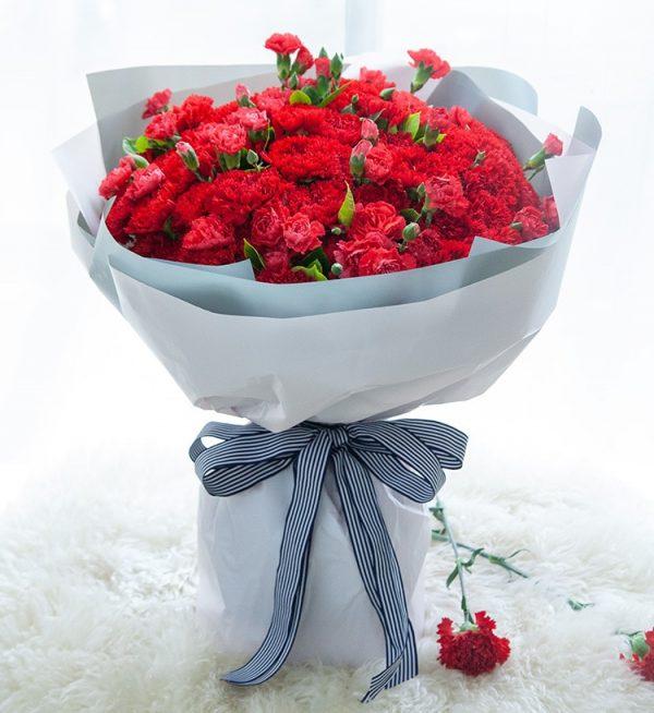 99枝红色康乃馨配多头康乃馨及叶子/健康长久