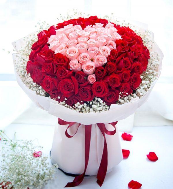 99枝鲜花(33枝粉色玫瑰66枝红玫瑰配满天星)/用心爱您