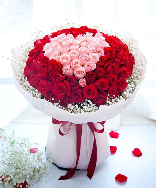 99 Stems (33 Stems Pink Rose & 66 Stems Red Rose)with Babysbreath