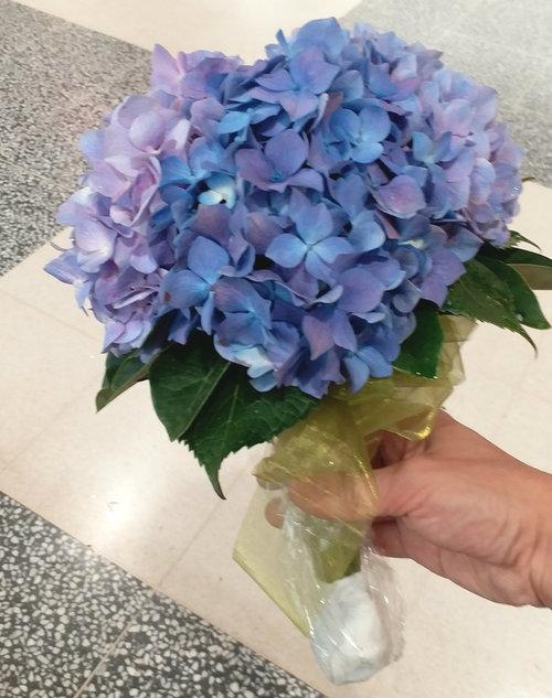 Over 3 Stems Hydrangea Wedding Bouquet